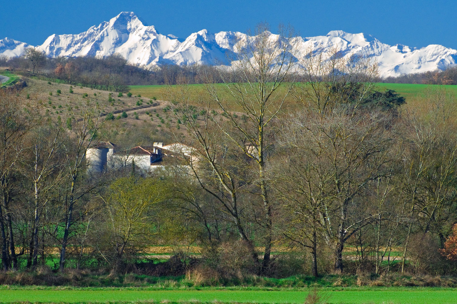 Vue sur les Pyrénées et le chateau de la commanderie / View of the Pyrenees and the Commanderie Castle